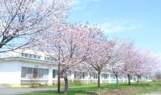 すずらん荘(桜)リサイズ